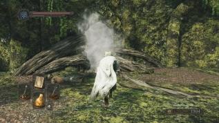 Dark Souls 2 vs Dark Souls2